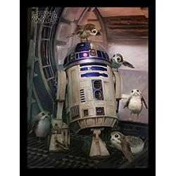 Star Wars The Last Jedi R2-D2 & Porgs Framed 30 x 40cm Print